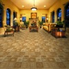 wool rich commercial carpet