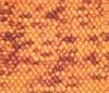 woolen shaggy carpet dense pile